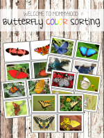 Butterfly color sorting cards
