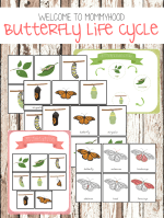 Butterfly life cycle printables