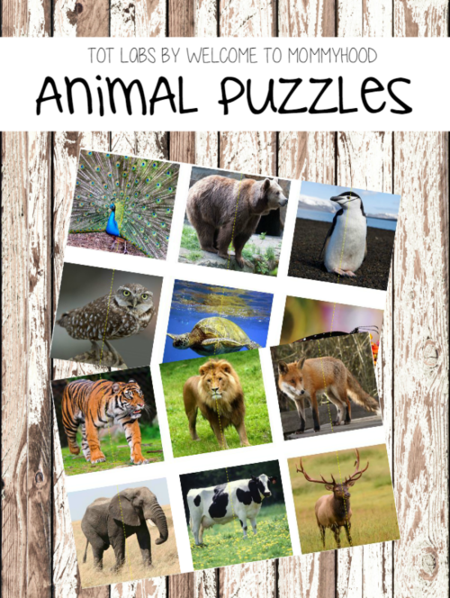 Realistic animal puzzles for kids