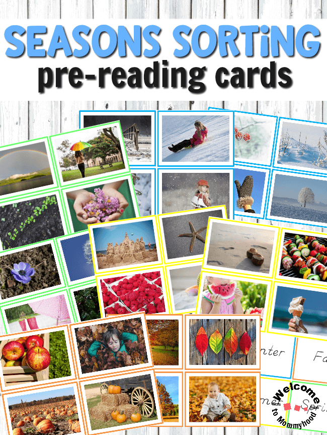 Montessori Inspired Seasons Sorting Cards