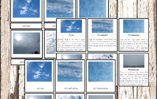 Montessori Cloud 4 Part Cards