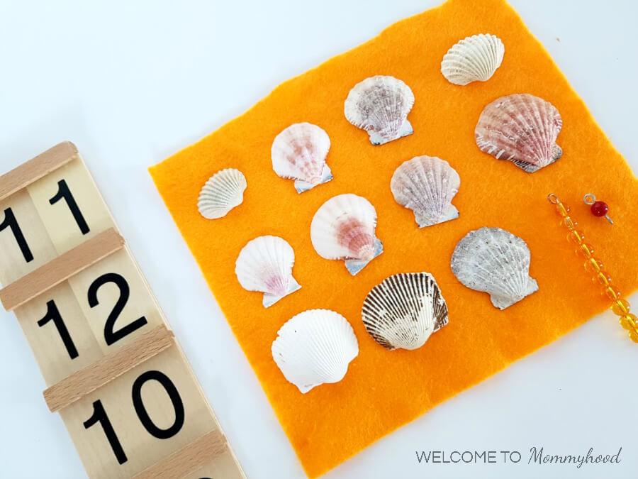 Seashell activities for kids: Montessori inspired seashell activities for preschoolers #seashellactivities #montessoriactivities #preschoolactivitiesSeashell activities for kids: Montessori inspired seashell activities for preschoolers #seashellactivities #montessoriactivities #preschoolactivities