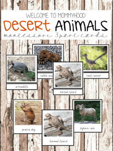 Montessori activities: desert animals 3 part cards