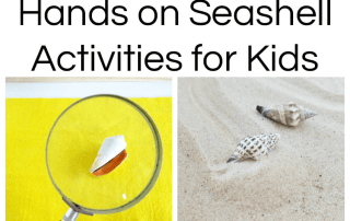 Seashell activities for kids: Montessori inspired seashell activities for preschoolers #seashellactivities #montessoriactivities #preschoolactivities