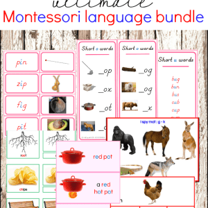 Montessori Pink Series Language Curriculum Bundle