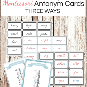 Montessori Antonyms Cards