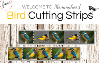 Montessori bird themed cutting strips #montessori #montessoriprintables