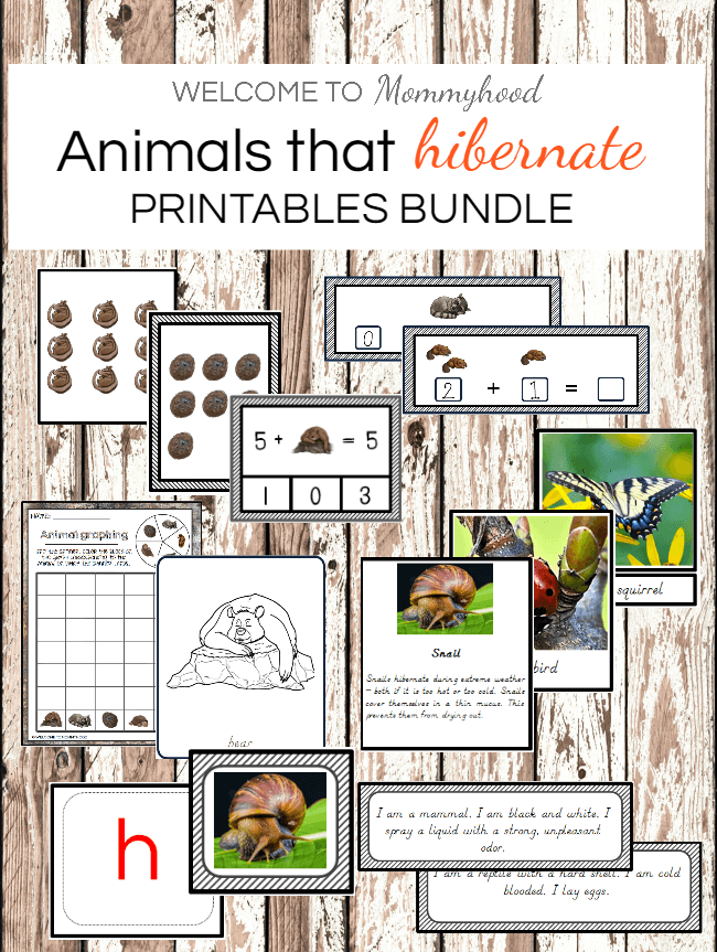 Montessori Animals That Hibernate Printables For