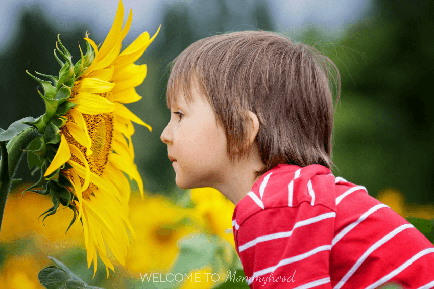 How To Make Your Nature Walk With Kids Awesome Natureactivities