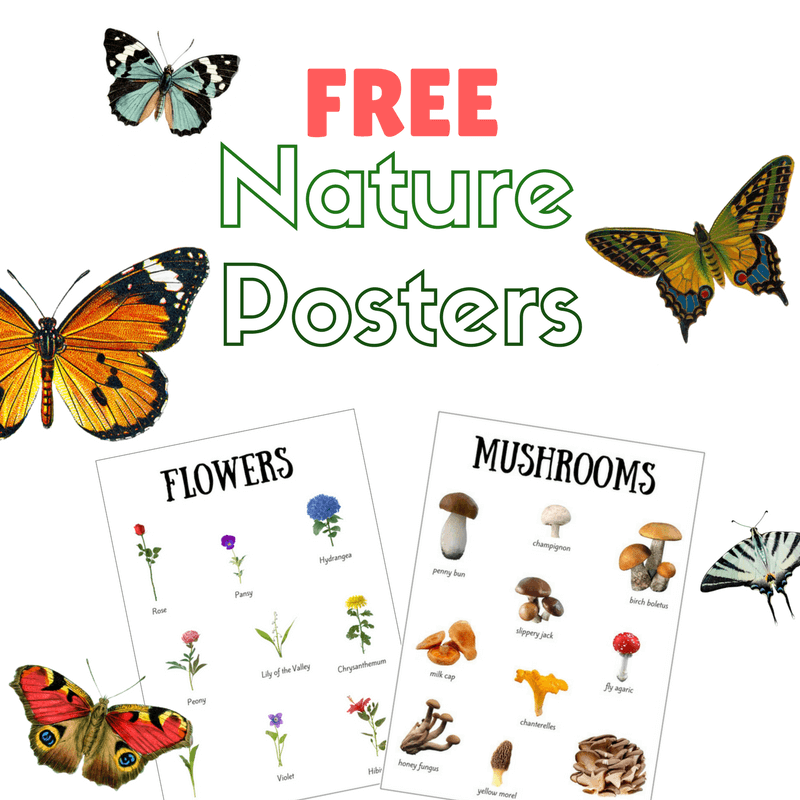 free nature posters