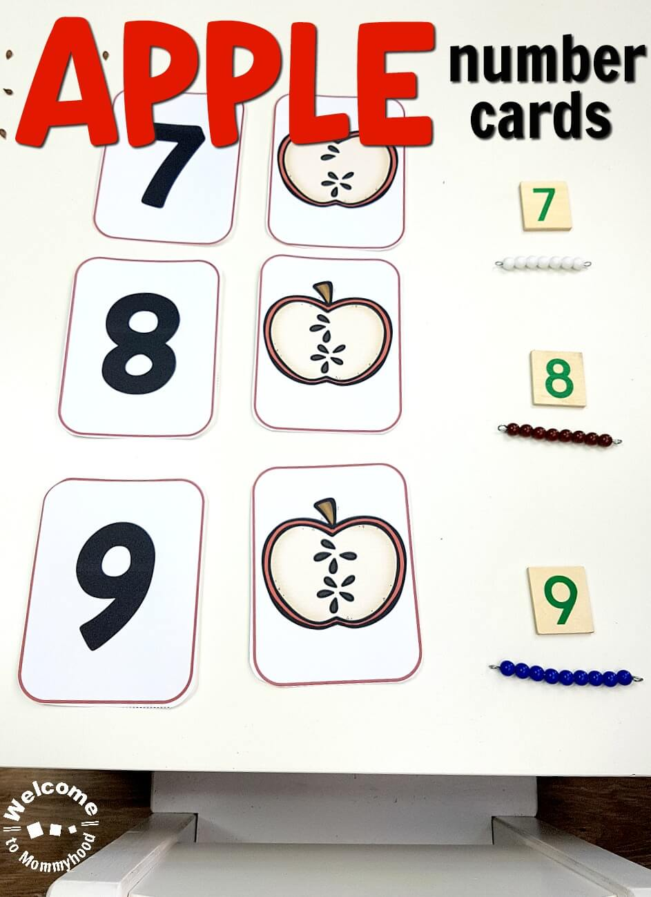 Use these apple number cards to teach your students number order and number quantity. Perfect for preschool math centers or Montessori activities. #preschoolactivities #montessori