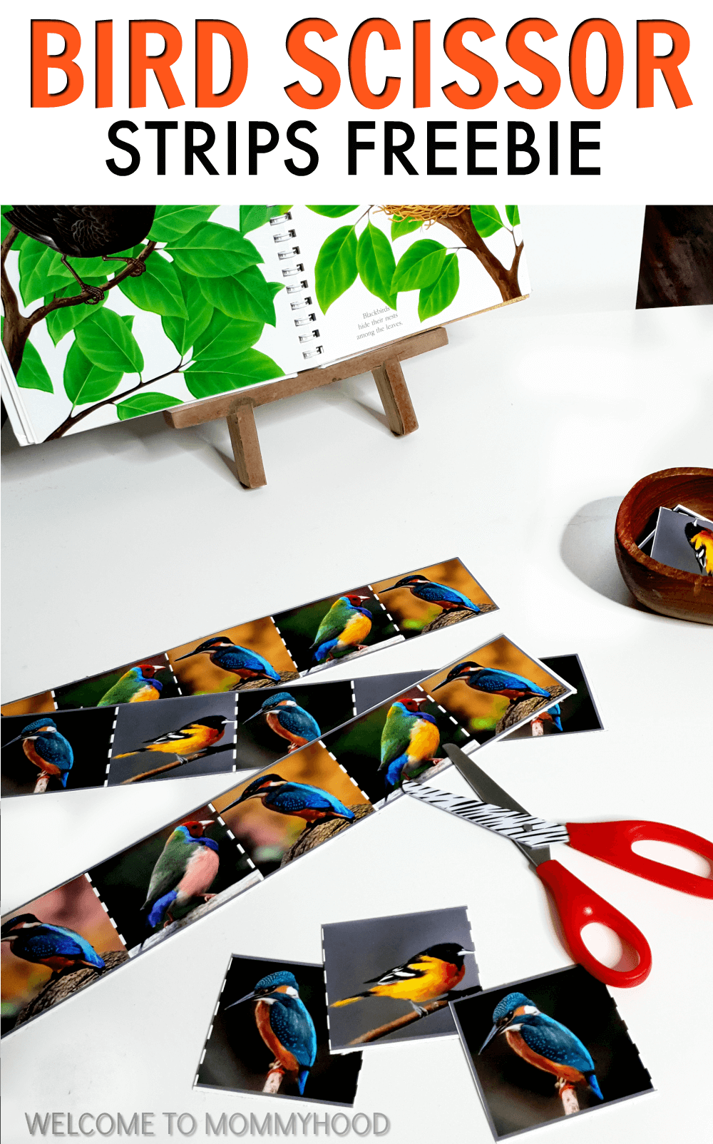 Use these bird themed printables to practice scissor skills with your children. These bird scissor strips are perfect for increasing hand muscle strength.