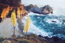McWay Falls, California