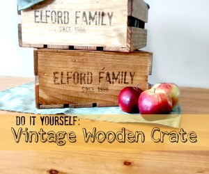 DIY Vintage Wooden Crate – Welcome To The Zoo