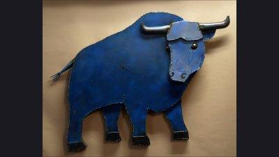 scul-blueoxflorecactual