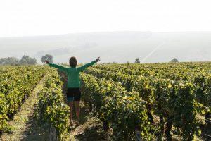 Tussen de wijnvelden Langs oude wegen en pelgrimssteden