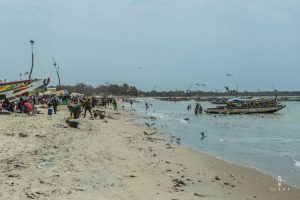 busy fishing beach in Gambia