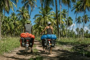Cycling in Brazil between the palm trees in Brazil