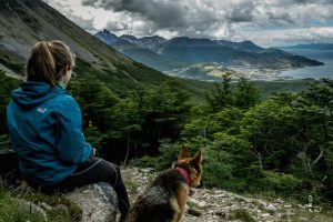 Hiker with dog watching Ushuaia from above