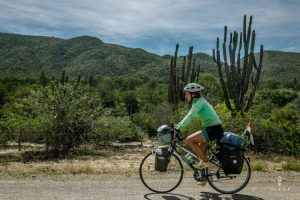 Cycling between the cactuses