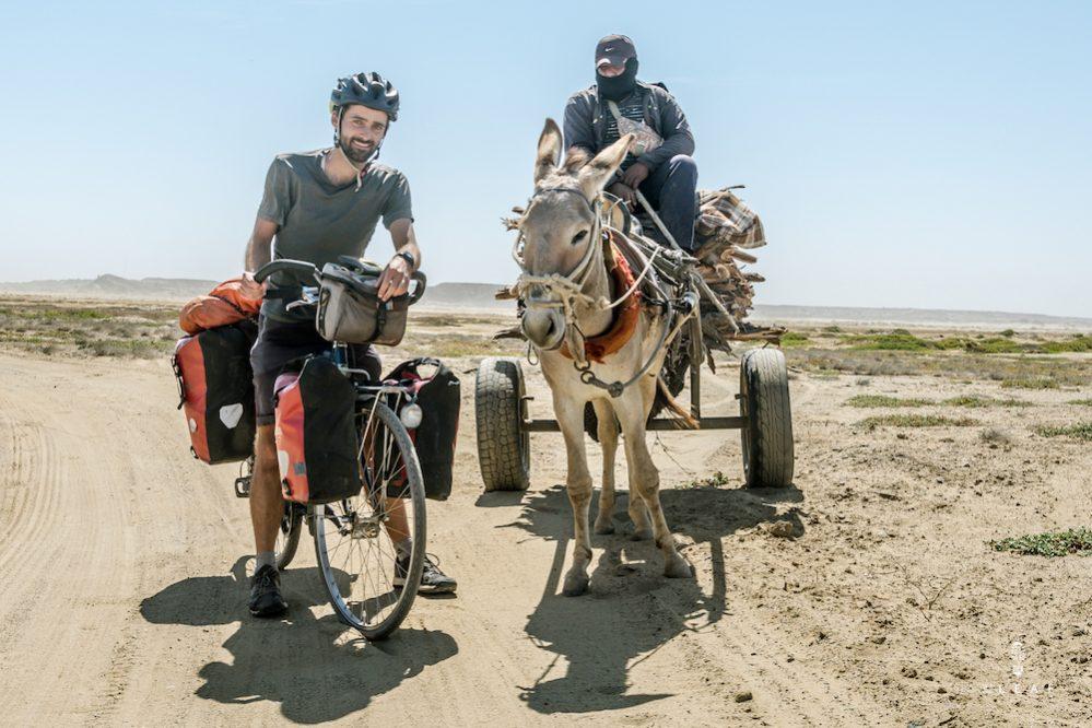 hout verzamelen in de woestijn met ezel en kar