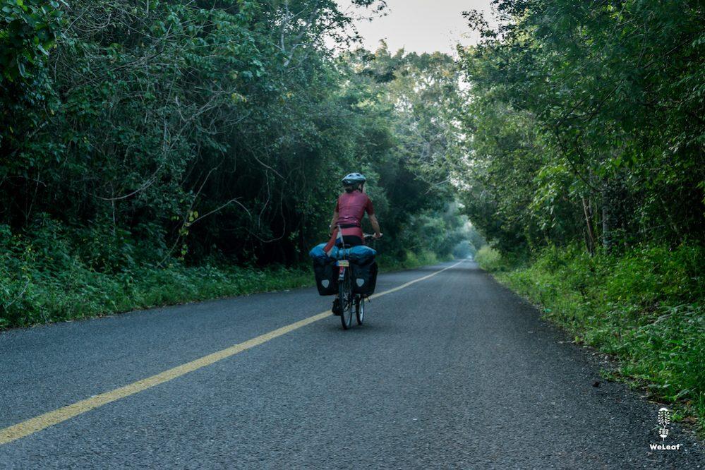 long straight roads in Yutacan
