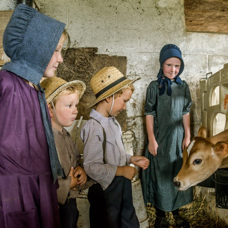 mennonite children inside a stable