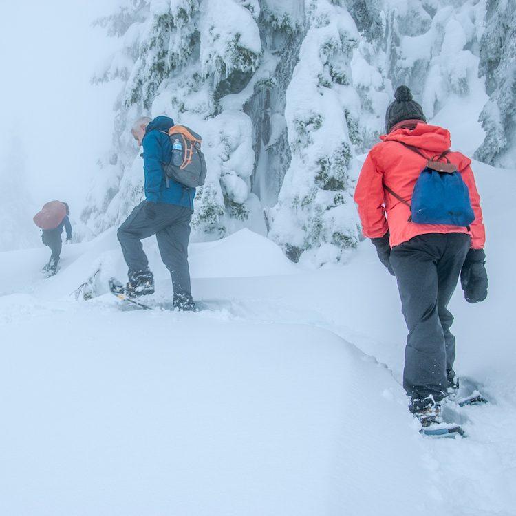Snowshoeiing around Vancouver