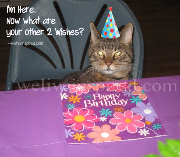 Here he is at my Birthday Party this year...