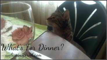 The cat that came to dinner