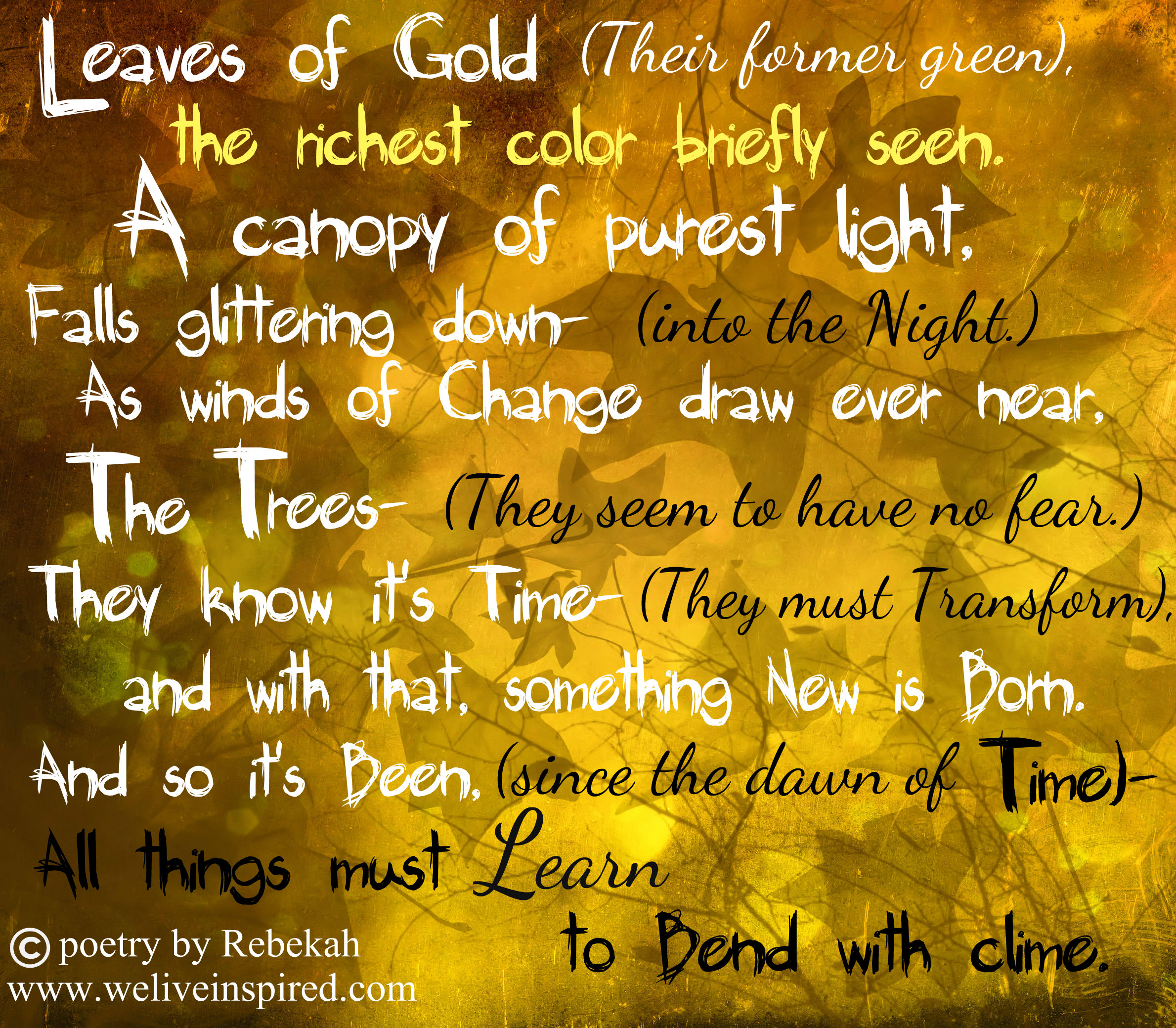 Lessons of Fall-Poetry in Five - We Live Inspired!