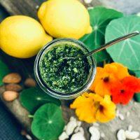 Kapuzinerkresse Pesto | Natürliches Antibiotikum