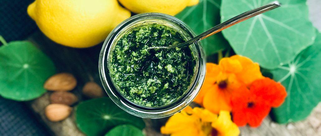 Heilkraut Kapuzinerkresse. Antibiotikum aus der Natur. Pesto Rezept. Vegane vollwertige Ernährung. Gesundheit.
