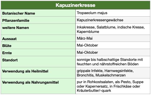 Steckbrief Heilpflanze Kapuzinerkresse. Antibiotikum aus der Natur. Gesunde Ernährung.