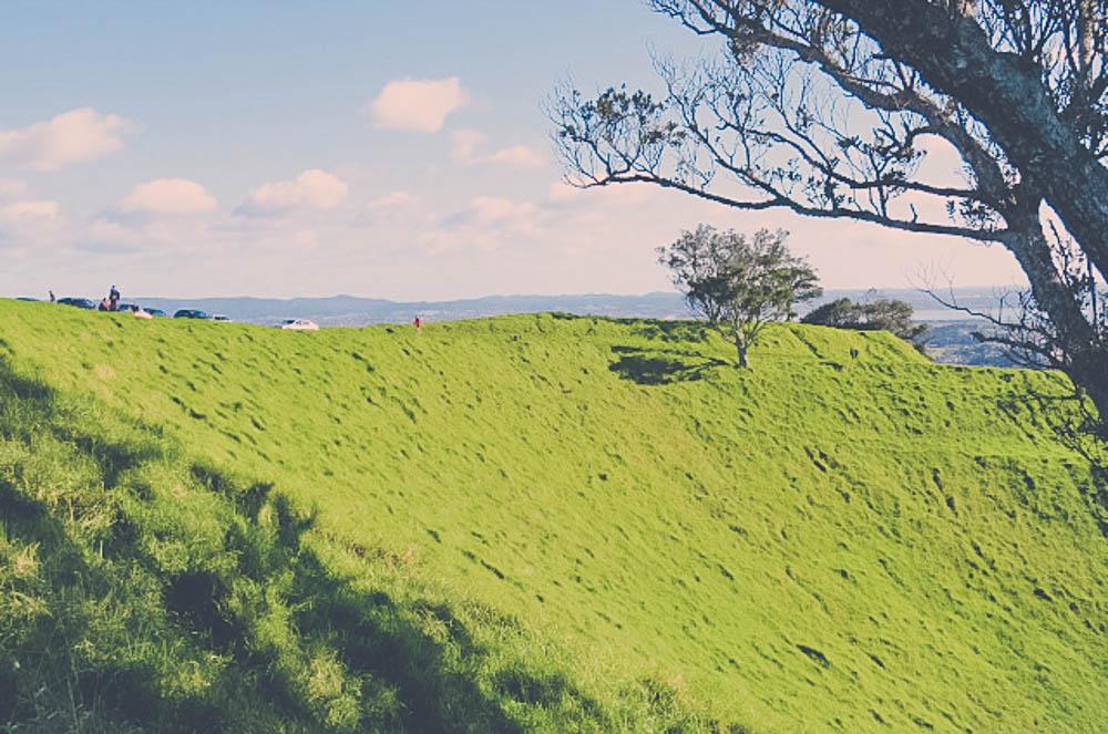 newzealand-143