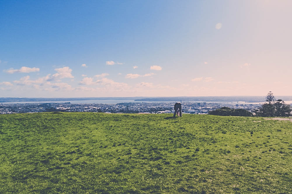 newzealand-156