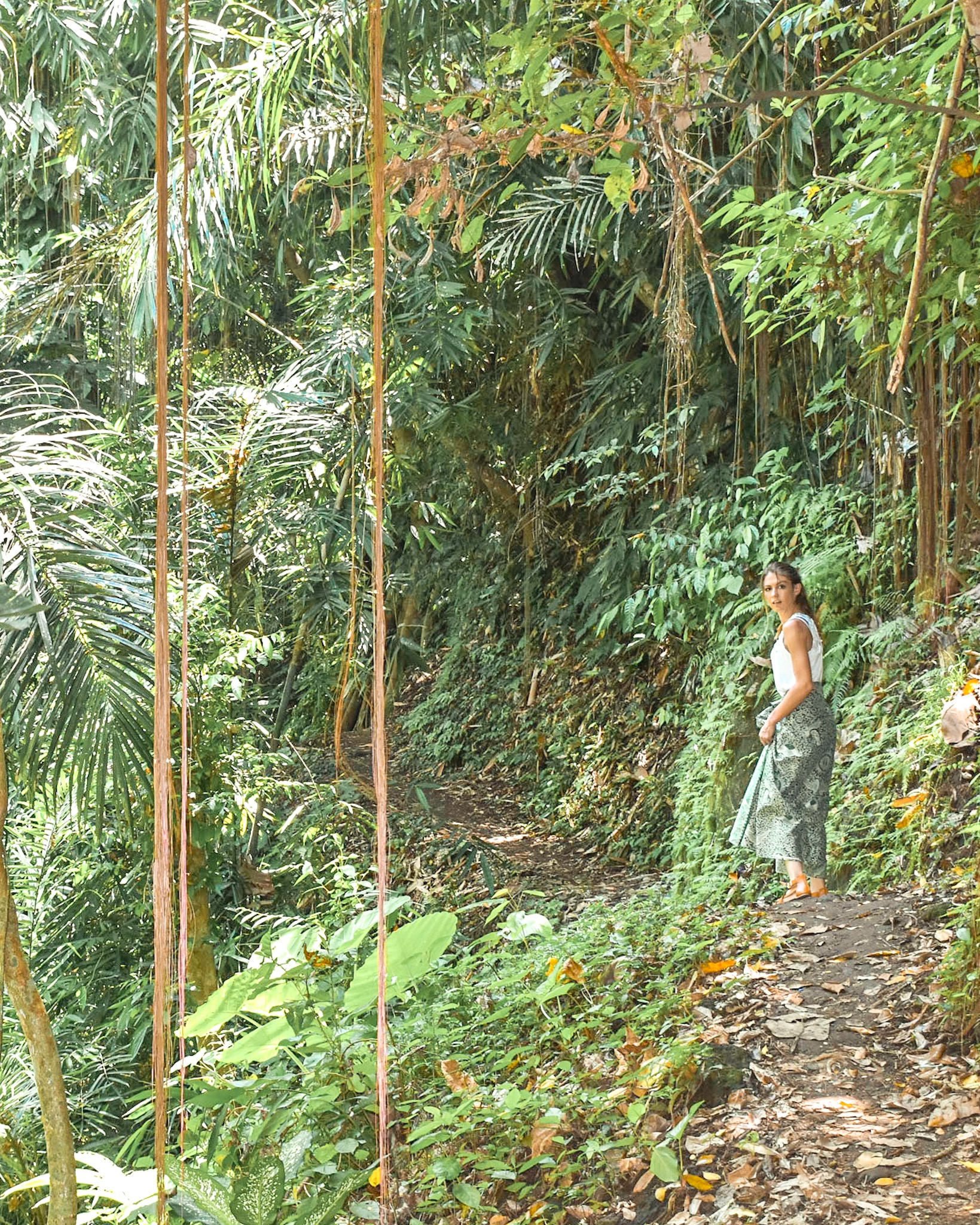 Woman Walks Through Jungle in Bali