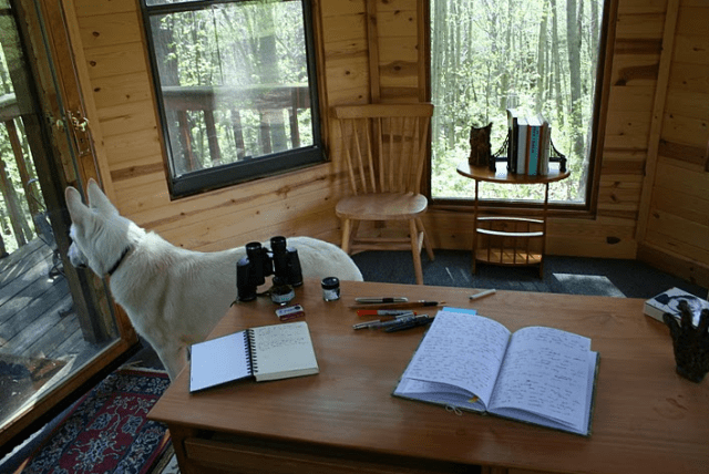 Neil Gaiman's Writing Shed Interior