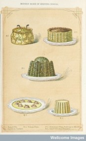 A selection of puddings from Beeton's The book of household management (1861). In the centre is the elaborate Christmas Plum Pudding in Mould (P1).
