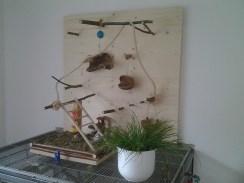 Käfigeinrichtung by Annett