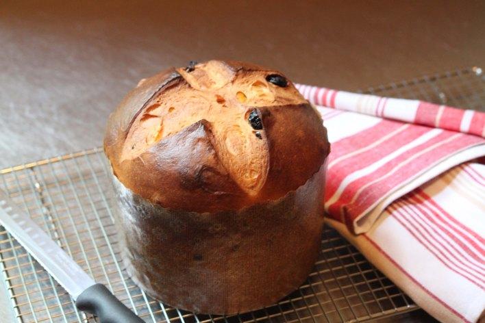 Baked-v1