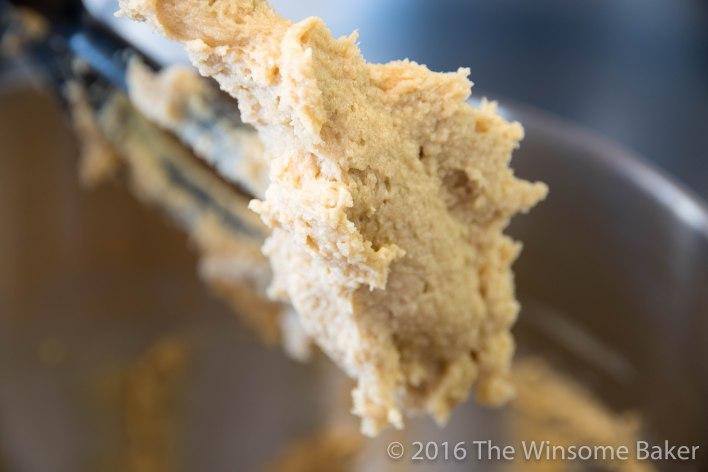 Malt, Chocolate + Sea Salt Finger Cookies -2