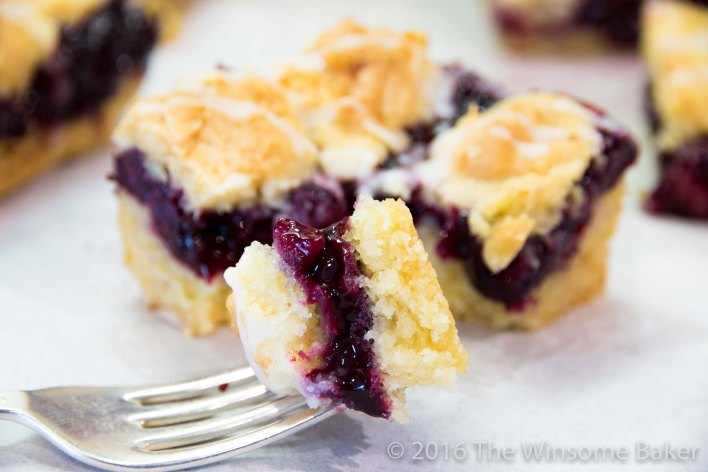 blueberry-shortcake-crumble-bars-16