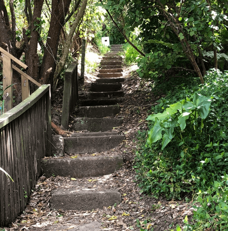 Screen Shot 2020-01-01 at 2.55.58 PM