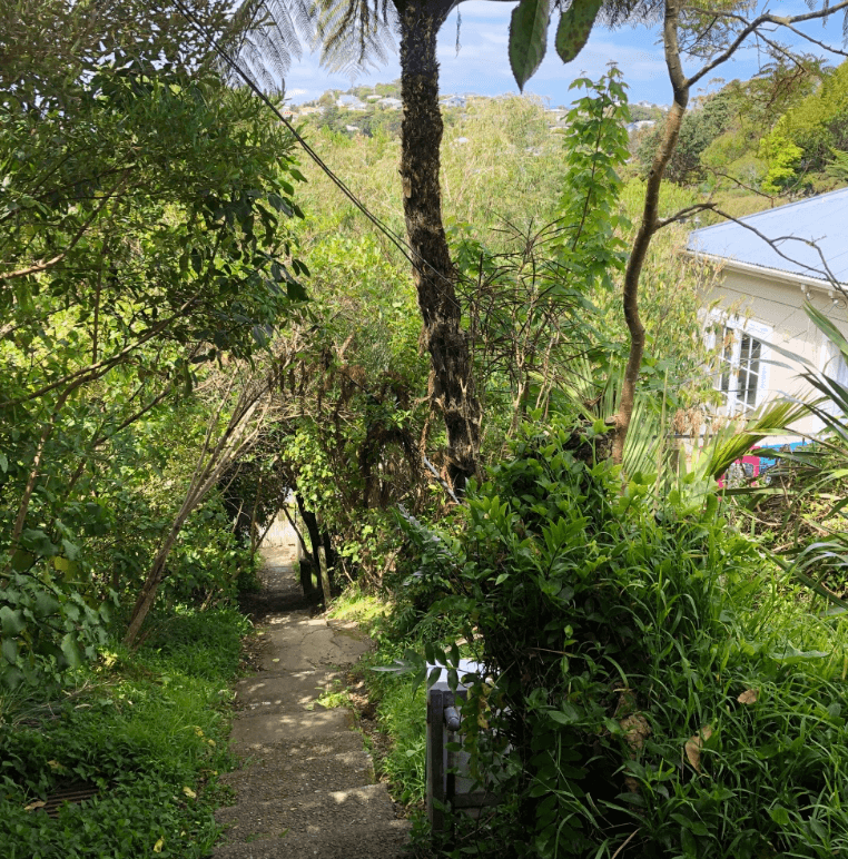 Screen Shot 2020-01-01 at 2.58.17 PM
