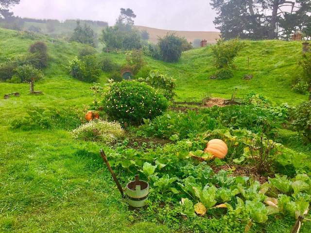 Alexanders Farm - The Hobbiton