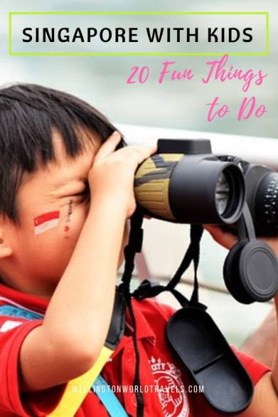 20 Fun Things to do in Singapore with Kids - Wellington World Travels | Family travel destination | family travel tips | things to do in Singapore #travelwithkids #familytravel