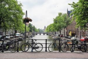 Best Family-Friendly Day Trips from Amsterdam