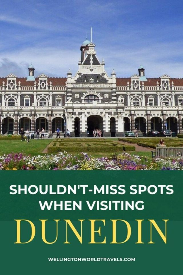 Shouldn't-Miss Spots when Visiting Dunedin - Wellington World Travels