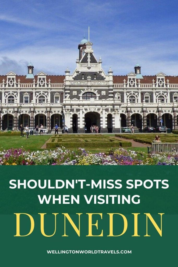Shouldn't-Miss Spots when Visiting Dunedin - Wellington World Travels